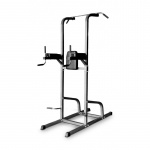 Bodyworx Deluxe Power Tower Bodyworx Deluxe Power Tower