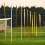 Mitre Agility Pole Set - 12pce Mitre Agility Pole Set - 12pce
