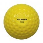 Paceman Reg Balls - 12 pk Paceman Reg Balls - 12 pk