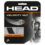 Head Velocity MLT String Set Head Velocity MLT String Set