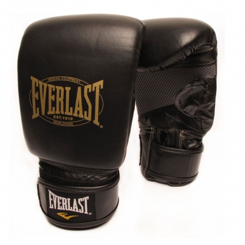 Everlast 1910 Leather Training Glove
